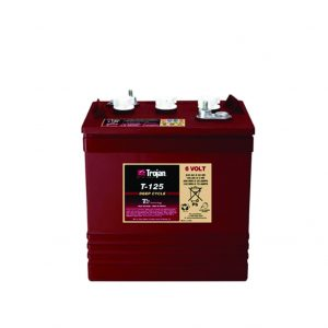 T125 Automotive Trojan Battery - GC-T125